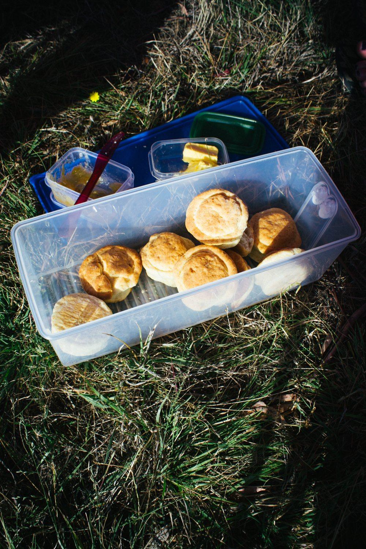 Festival scones